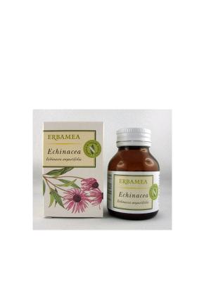 Echinacea (Echinacea Angustifolia DC.)