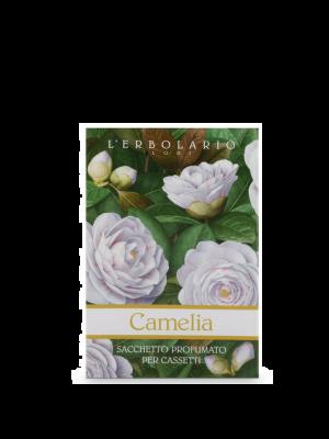 CAMELIA SACCHETTO PROF CAS