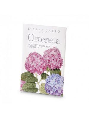 ORTENSIA SACCHETTO PROF CASSET